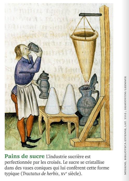 La croisade une colonisation comme les autres - l'histoire n°437-pains de sucre